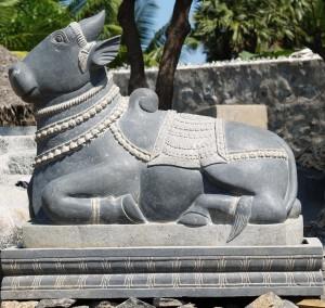 Nandi, Shiva's white bull