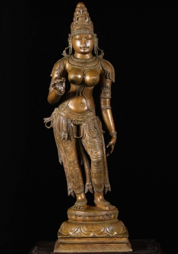 Bronze Goddess Parvati Statue as Shivakami 40