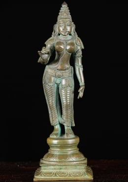 Bronze Parvati As Shivakami Murti 9