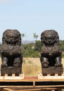 Stone Pair of Foo Dog Statues 31