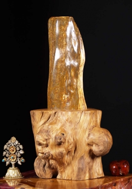 Natural Petrified Wood Shiva Lingam 20