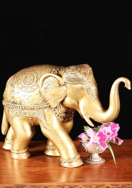 Brass Elephant Statue with Trunk Up 8