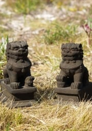 Pair of Lava Stone Resin Foo Dog 9