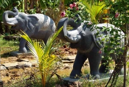 Pair of Elephants With Raised Trunks 48