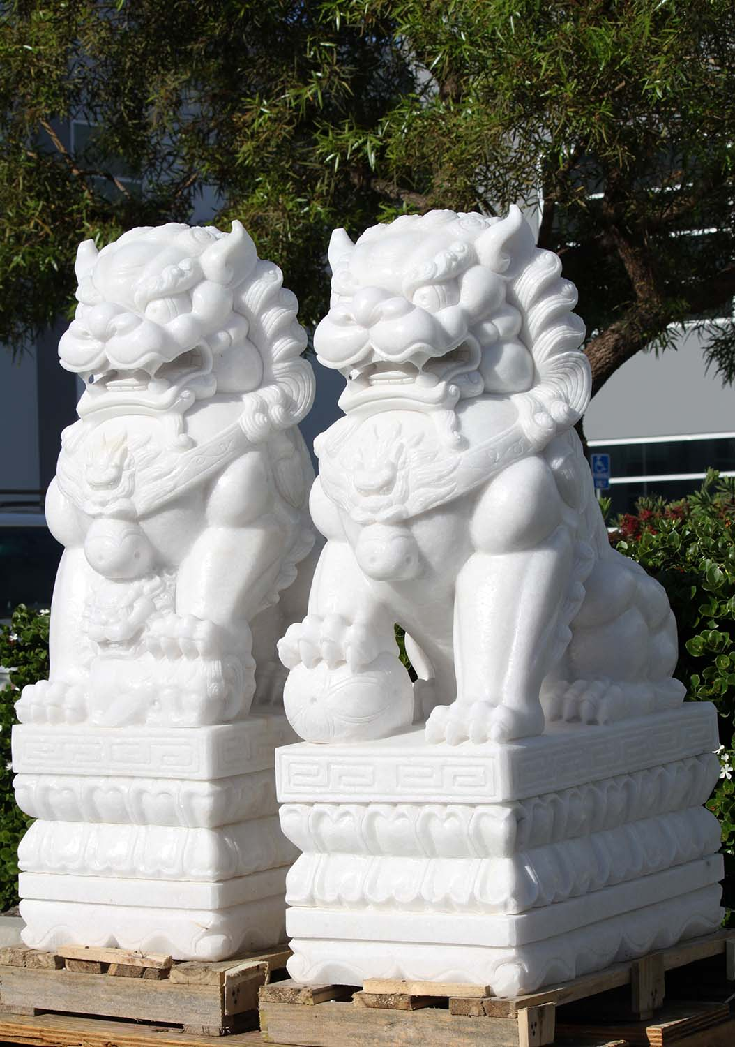 White Marble Large Foo Dogs Statues 47 Quot 109wm14 Hindu