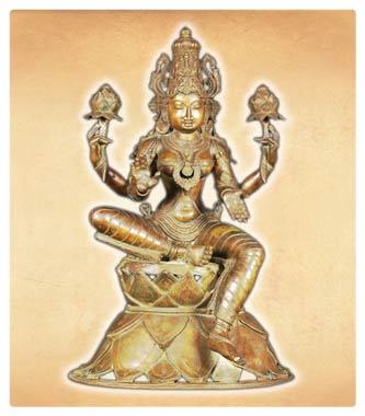 Lotus Flower Hindu Sacred Flower Lotus Flower Symbolism